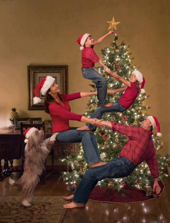 christmas tree acro - When To Take Christmas Tree Down